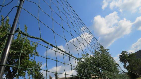 Bei schönem Wetter ist dieser stabile Zaun noch besser... :)