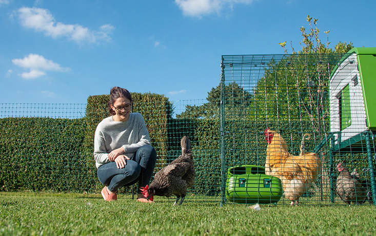 Omlet Chicken Fencing | Green Poultry Netting for Chickens