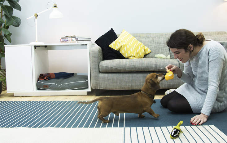 Providing your dog with their own special space such as the Omlet Fido Nook has been proven to improve confidence and overall behaviour