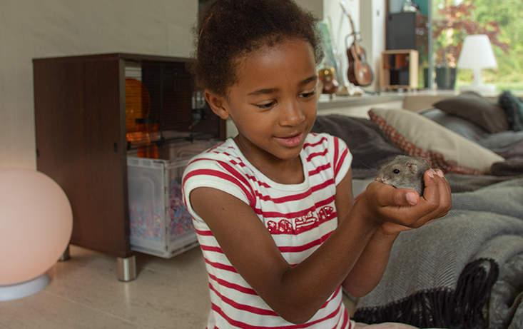 Une enfant qui tient un rongeur dans ses mains