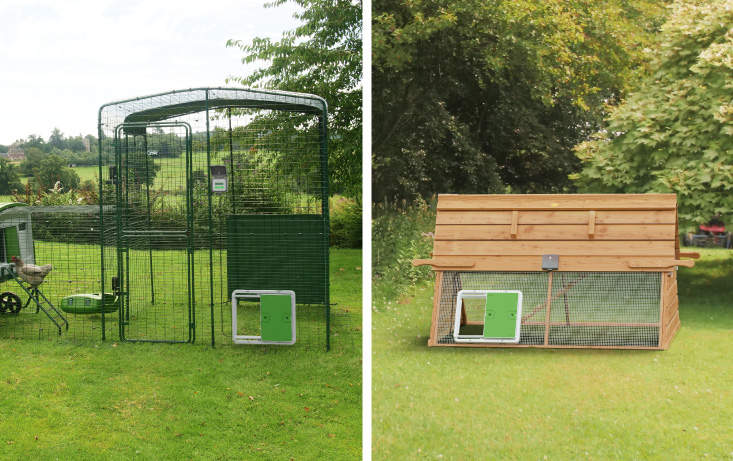 The Autodoor is compatible with Omlet runs and traditional chicken wire