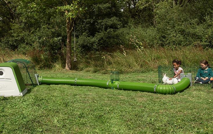 Zippitunnlarna kan lätt och snabbt kopplas till gården på en Eglu Go-bur