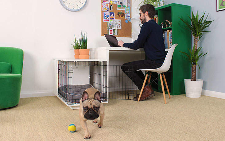 The second door on the end allows your Omlet Fido Studio into any space