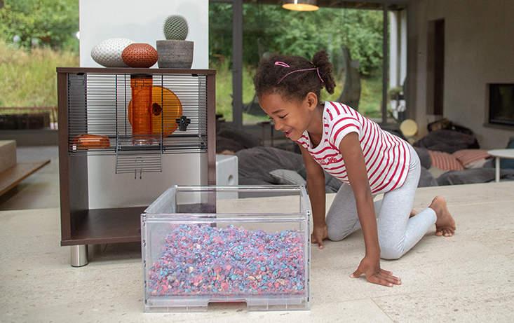 Vos enfants peuvent enlever le tiroir pour regarder leurs rongeurs et passer du temps avec eux !