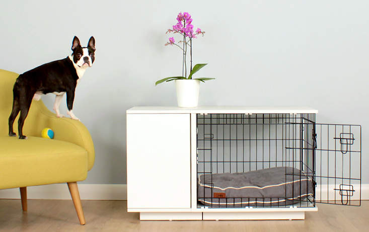 Your dog will be proud of their Omlet Fido Studio