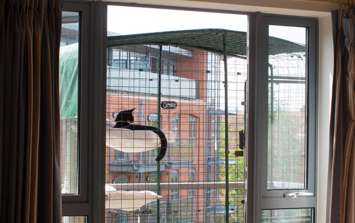 The enclosure provides a completely secure outside environment for your cat