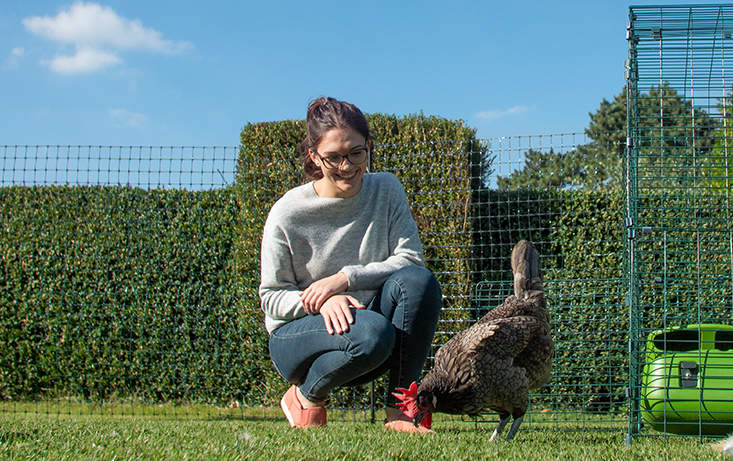 The dark poultry fencing blends seamlessly into your backyard