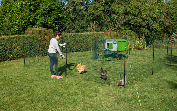 Omlet's new chicken fencing features tangle proof netting and adjustable poles