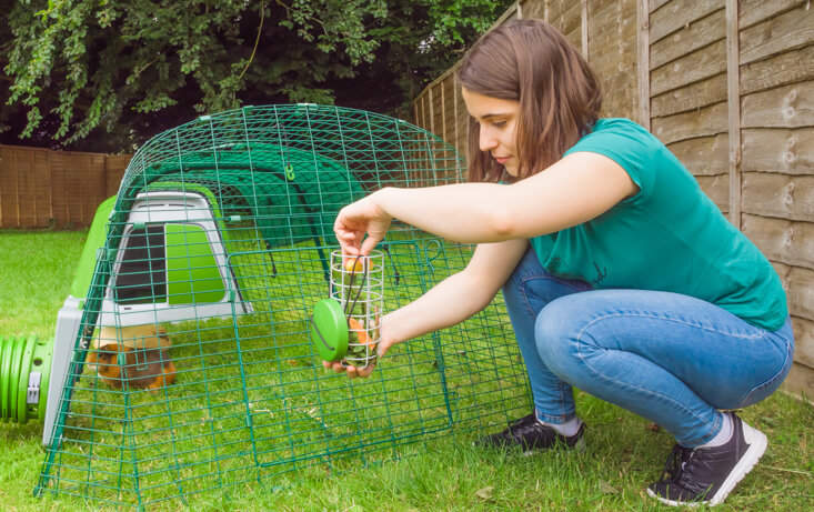 Refilling your Caddi Guinea Pig Treat Holder is quick and easy. Simply detach the feeder from the plastic hook and fill as required!