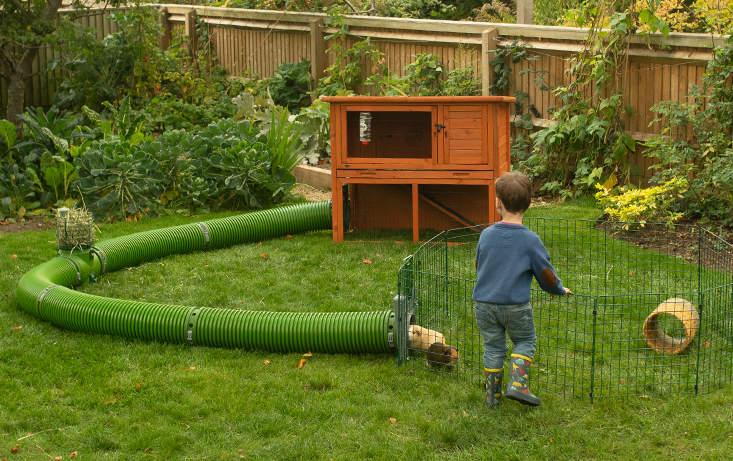Un enfant qui joue avec ses cochons d'Inde dans leur Parc Zippi