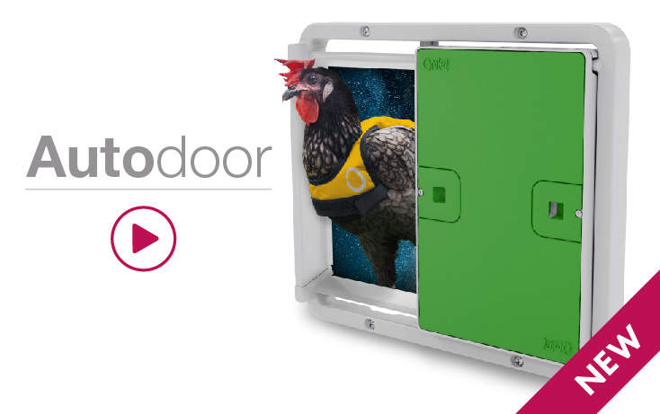New Omlet Automatic chicken coop door opener