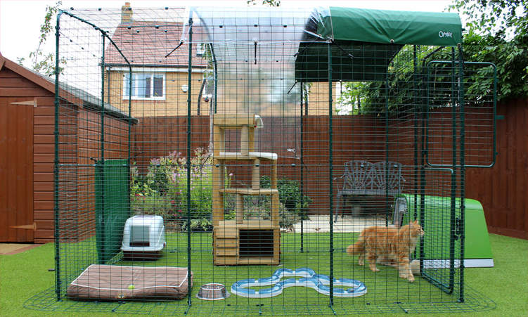 The beautifully designed dark green Catio enclosure will look great in your backyard