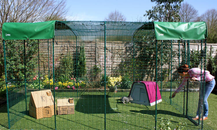 The Outdoor Rabbit Run is extendable, so you can make it as large and spacious a rabbit pen as you like! The hi-rise run is comfortably large enough for you to walk inside