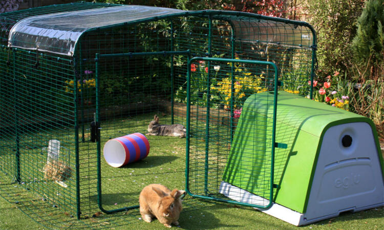 The lo-rise rabbit run offers lots of floor space for your pet bunnies and they will absolutely love having access to fresh grass