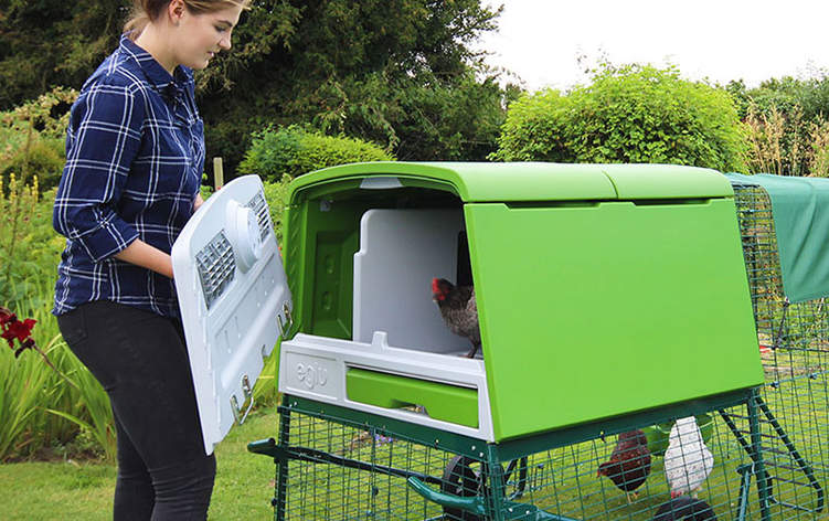 The removable rear panel gives you easy access to the nest box and roosting area