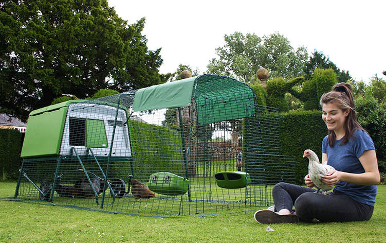 The Egly Cube modern chicken coop looks fantastic in your yard