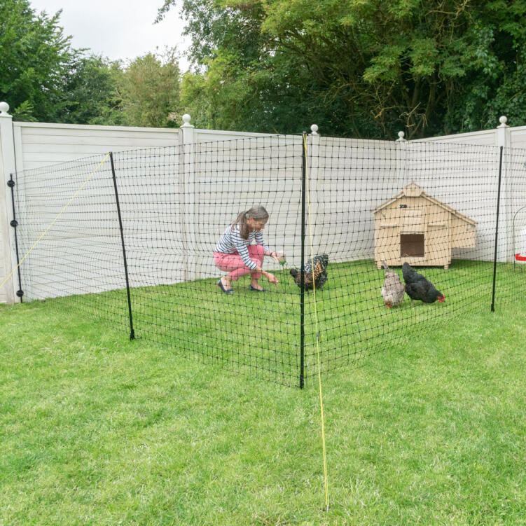 Chicken Fencing Poultry Netting Non-electric Fence 25m Green