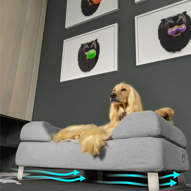 Raising the bed over the floor with customised feet improves airflow and hygiene, making it a perfect solution for a happier and healthier dog.