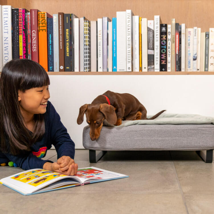 The feet come in a range of designs, like the ski style metal rail in black seen on the small Topology dog bed here.