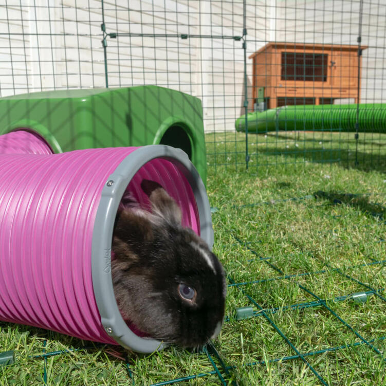 Accessories your rabbit's run with Omlet play tunnels to mimic the natural burrows rabbits enjoy in the wild.