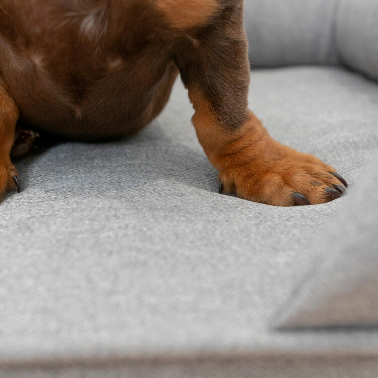The memory foam mattress moulds itself after your dog's body, ensuring hours of soundless sleep.