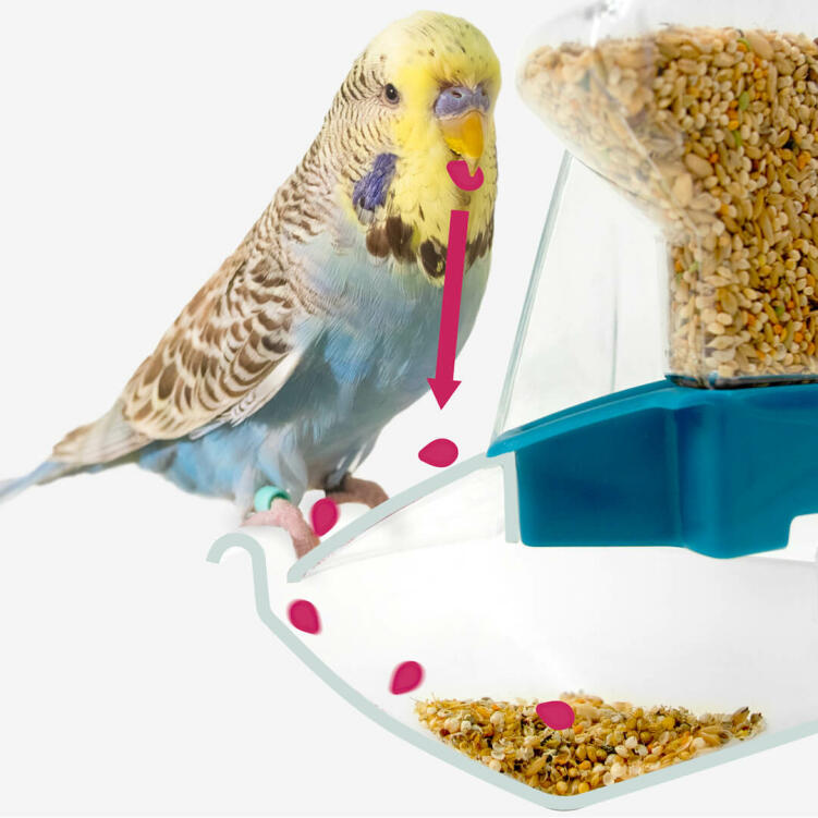 The revolutionary feeder is designed to catch any spillages of feed or husk
