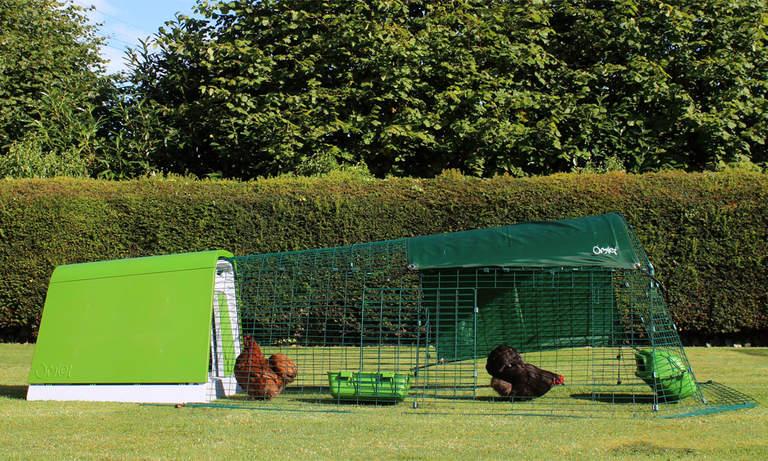 Ett grönt Eglu Go-hönshus kommer se fantastiskt ut i alla trädgårdar