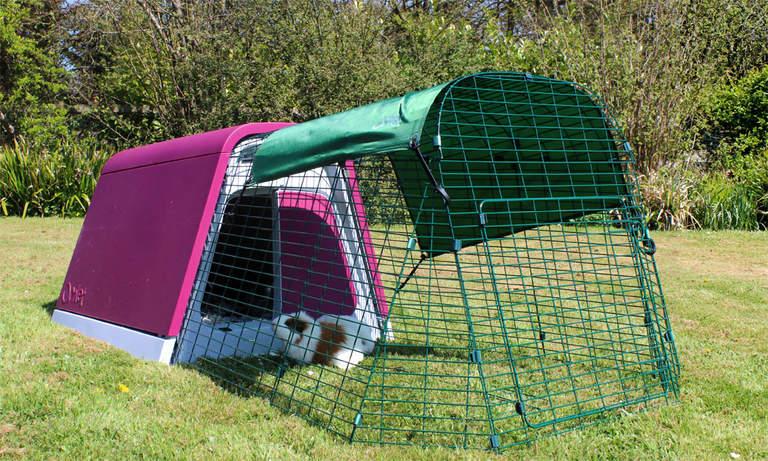 Domek dla świnek morskich Eglu Go Hutch w kolorze fioletowym