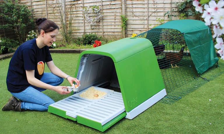 Lett å komme til inni hønsehuset - og hente egg