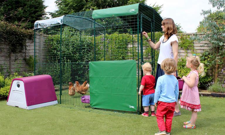 Grand enclos 2x3x2m avec Eglu Go - une famille qui passe du temps avec ses poules