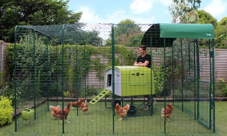 Vergroot uw Inloopren voor kippen uit met de eenvoudig te bevestigen uitbreiding