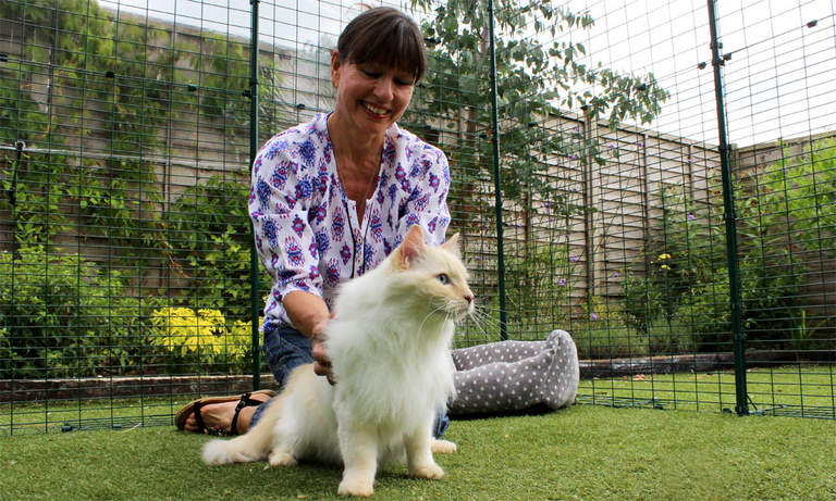 Une femme qui caresse un ragdoll dans le Grand enclos sécurisé pour chats d'Omlet