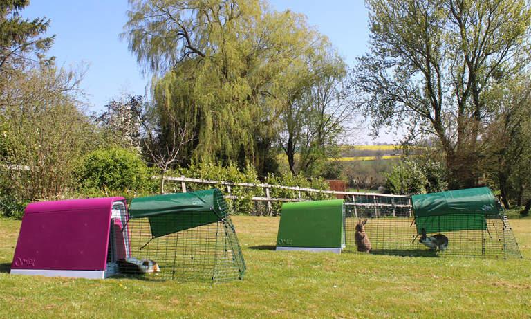 Eglu Go marsvinbur og Eglu Go kaninbur i hagen