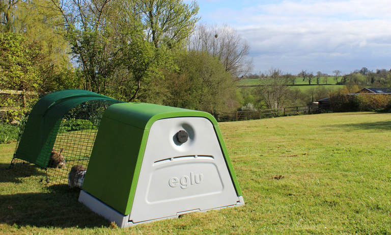 Rabbits love being outdoors in the Eglu Go Hutch