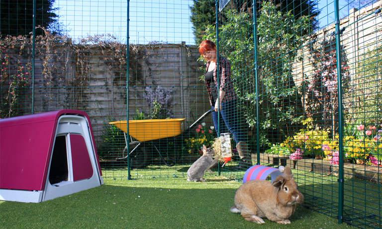 En kaningård ger dina kaniner gott om plats att hoppa runt på