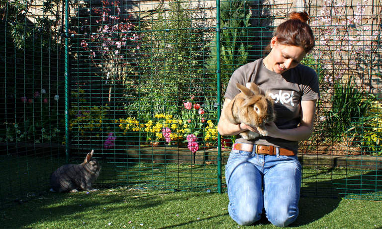 The hi-rise rabbit enclosure is high enough for you to stand in, with lots of room for you to sit and play with your pets.