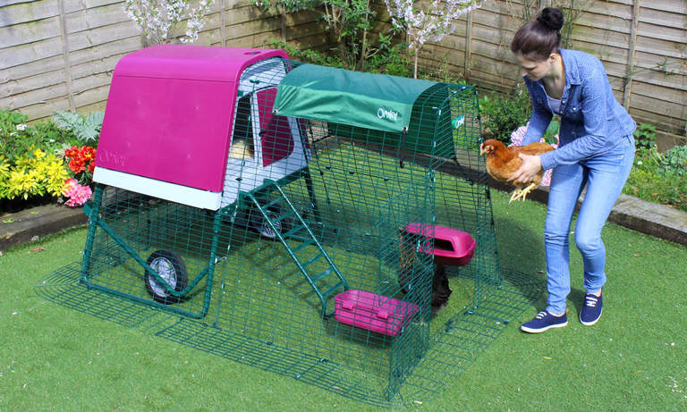 The Eglu Go Up is the ultimate portable chicken coop on wheels and looks great in purple or green