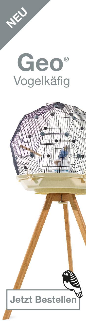 Geo Bird Cage Banner