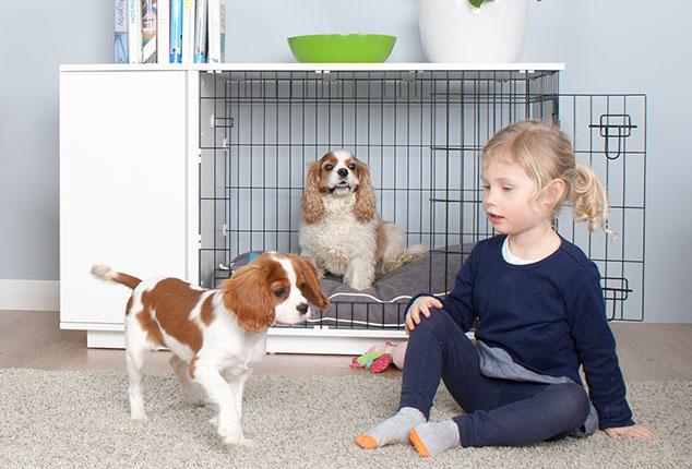 Der fido classic sichere faltbare hundetransportbox for Niche interieure pour chien