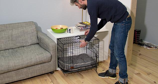 Eine Hundebox eignet sich hervorragend fürs Welpentraining