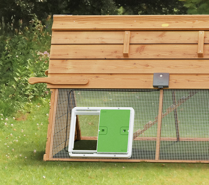 Automatischer Türöffner an Holzhühnerstall