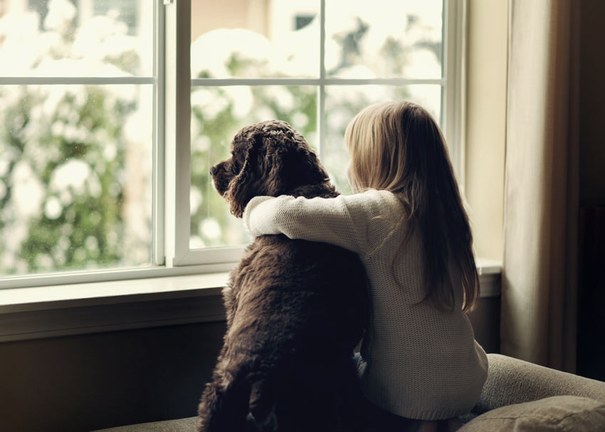 A dog sitting with a little girl looking out of the window