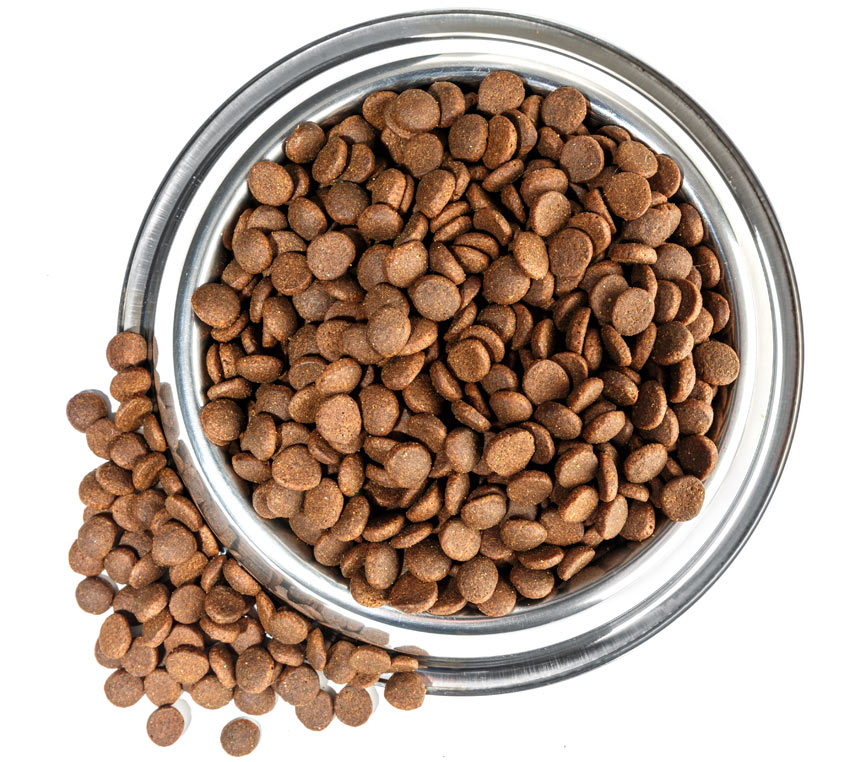 Dry Pet Food In Bowl