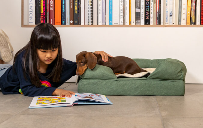 Spoil your dog with a luxury blanket that will make their bed even comfier.