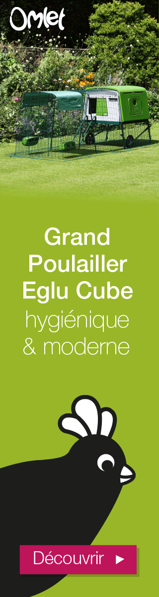 Grand Poulailler Eglu Cube