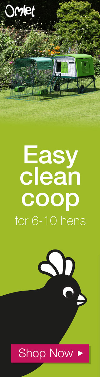 Easy clean coop for 6-10 hens