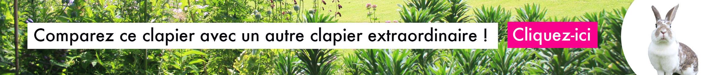 clapier_exterieur_eglu_go_pour_lapins_et_cochons_d_indes/