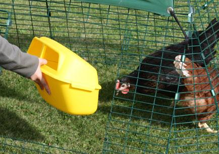 Døren på din hønsegård kan nemt flyttes til en anden position.