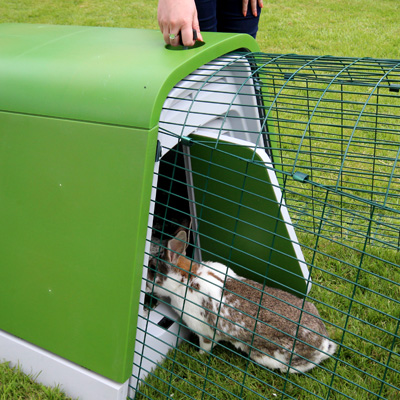 Öppna dörren på kaninburen Eglu Go