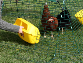 The chicken run has two doors and feed/water dishes can be attached to the sides.